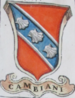 Coa fam ITA cambiani BNVE 315.png