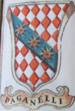 Coa fam ITA paganelli BNVE 314.png